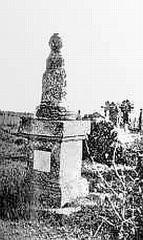 Памятник на могиле Д.Т. Лисаневича