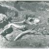 Скелет, найденный в Георгиевском карьере, бывший экспонатом сначала Пятигорского, а позднее - Ставропольского краеведческого музея