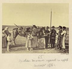 Проводы казаков на службу (Болдырев И.В. 1875-1876)