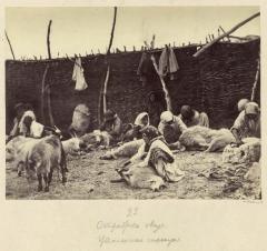Стрижка овец (Болдырев И.В. 1875-1876)