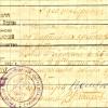 Владикавказ, удостоверение городского РКП(б), июль 1921 г.